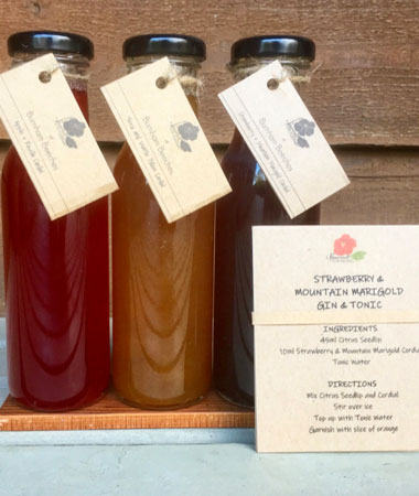 Our cordial gift pack